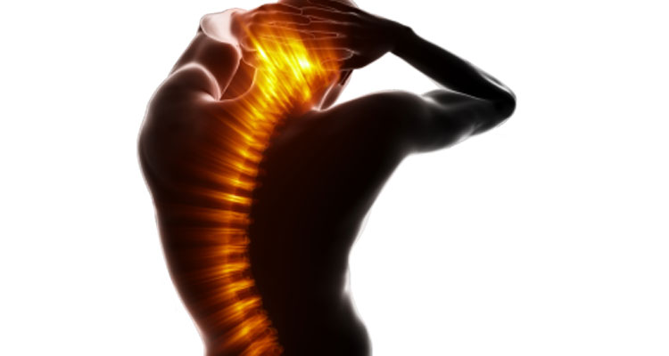 SERVICES OFFERED - image trigger-point-opt-1 on https://www.neuromuscularmassage.com.au